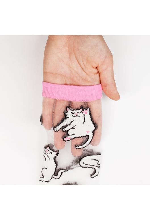 Chaussettes transparentes Chats