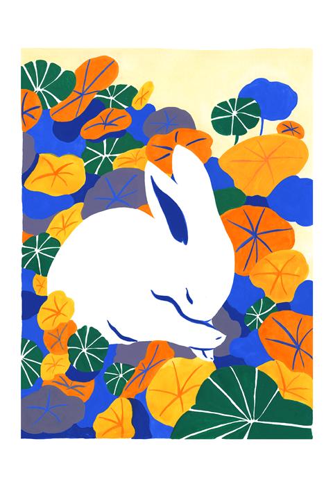 White Bunny (grand format)